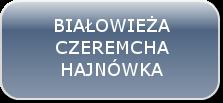 button-NEW-BIA-HAJ-CZER-1